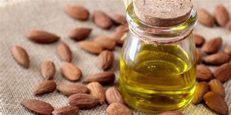 Minyak Kacang Almond 25 manfaat minyak almond untuk kesehatan kulit dan