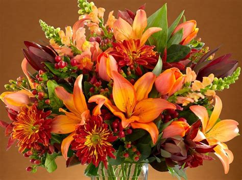 fall flowers fall flowers guide proflowers blog