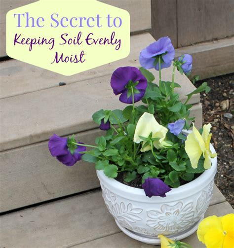 The Secret Keeping the secret to keeping soil evenly moist outnumbered 3 to 1
