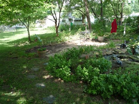 St Louis Landscaping Photos St Louis Landscaping