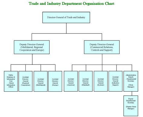 Organizational Chart Template Create Organization Charts With School Blank Flow Haccp Bus Blank Organizational Flow Chart Template
