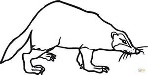 badger 2 coloring page free printable coloring pages