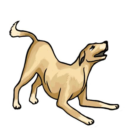 pictures of dogs to draw pictures to draw clipart best