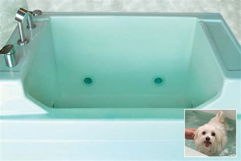 pet bathtub for dogs mti baths presents the jentle pet spa