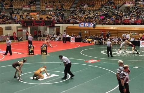 ohio high school wrestling sectionals division ii alliance and fostoria district wrestling
