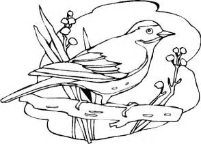 birds to color bird coloring pages free printable pictures