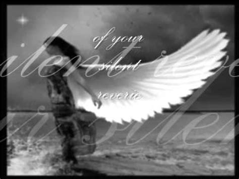 some comfort here lyrics sarah mclachlan in the arms of an angel youtube