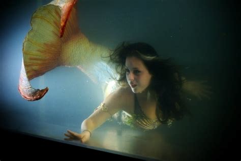 real mermaid photos on pinterest real mermaids real pinterest