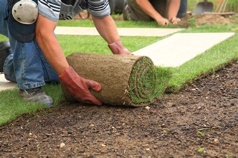 landscaping and lawn care in columbus ga down to earth landscaping