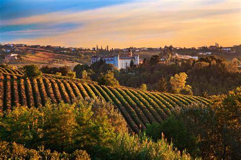 temecula puppies temecula wine tours top limo temecula wineries tour san diego limo