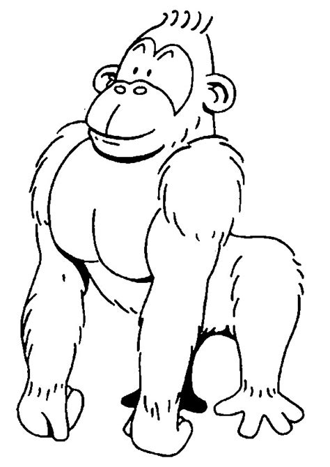 silly monkey coloring pages free coloring pages of funny monkey to color
