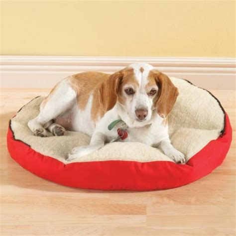 Pet Cave Bed by Gift Ideas Personalized Canvas Pet Cave Bed