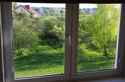 window with a view file window view with green trees 2 jpg wikimedia commons
