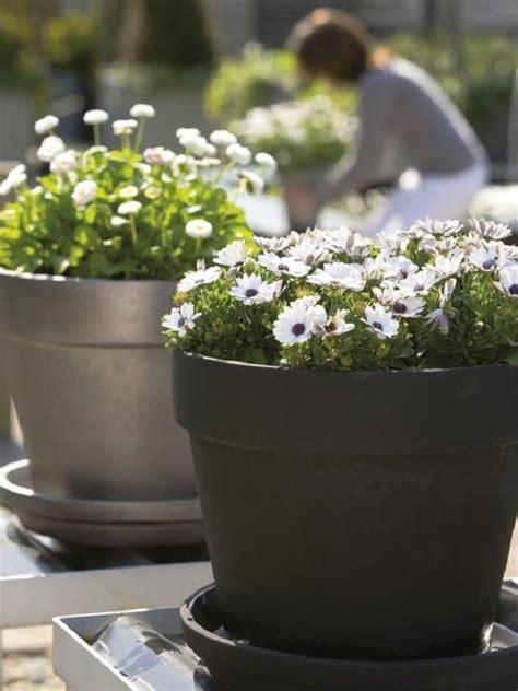 Balcony Planter Ideas by Patio And Balcony Planter Ideas