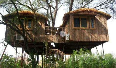 Treehouse Cottages Near Jaipur by Top 7 Tree House Resorts In India Waytoindia