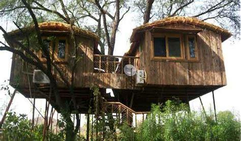 the ten top tree house top 7 romantic tree house resorts in india waytoindia com