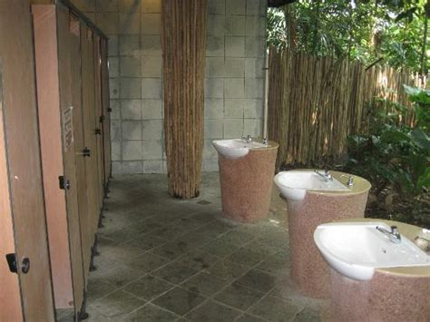 the coolest bathrooms coolest bathrooms in the world picture of singapore zoo