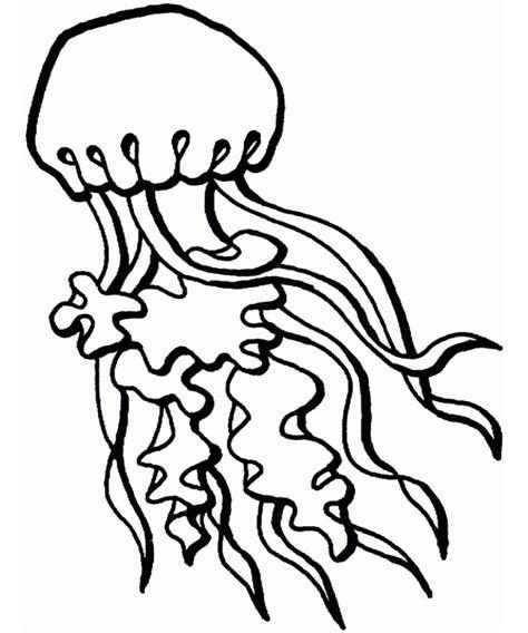 65 sea creature templates printable crafts colouring