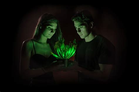 glow in the plants bioglow starlight avatar could bioluminescent plants be a