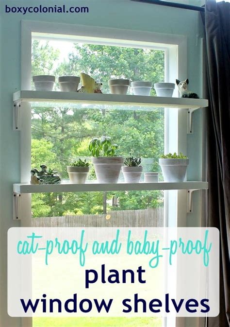 diy window plant shelves baby necessities bonus rooms