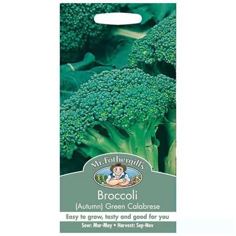 Benih Brokoli Green jual benih broccoli green calabrese 250 biji mr