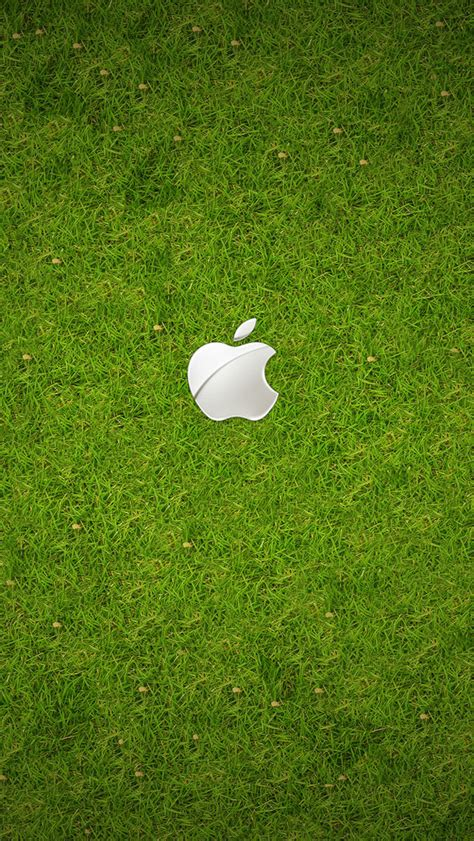 apple wallpaper for iphone 5 hd iphone 5 and ipod touch 5 wallpapers free download apple