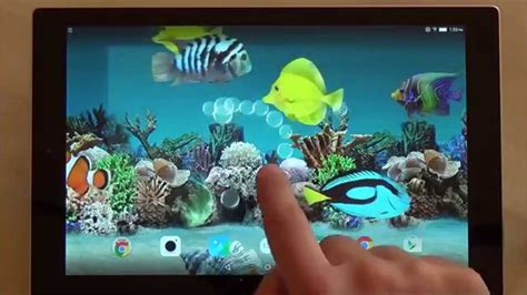 aquarium live wallpaper hd for android youtube coral fish 3d live wallpaper for android phones and
