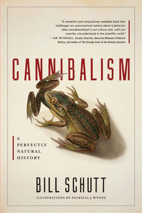book review quot cannibalism quot island pulse magazine