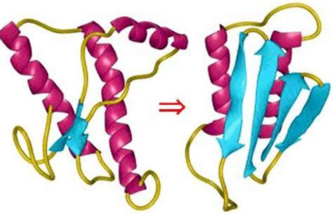 protein 2 abnormal imc institute of microbial chemistry projects prionase