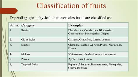 6 fruit classifications status of fruit and vegetable industry in india