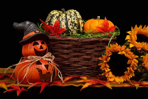 halloween themed pictures dark halloween theme free stock photo public domain pictures