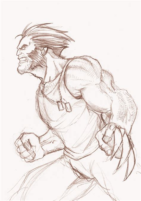 sketchbook x drawings wolverine sketch by zacbrito on deviantart