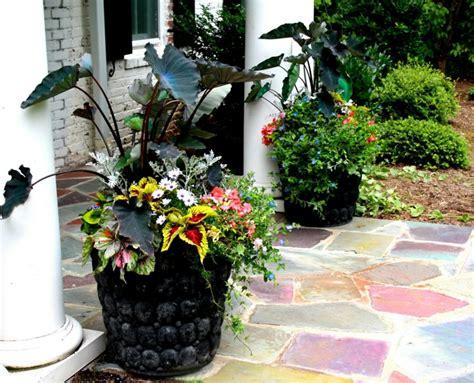wie einen hinterhof patio gestaltet gro 223 e pflanzk 252 bel effektvoll im garten in szene setzen