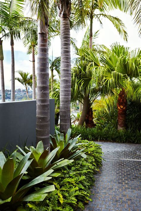 best garden designs 25 best ideas about tropical garden design on