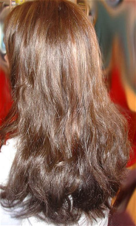 how much does expression hair cost how much do brazilian hair extensions cost indian remy hair