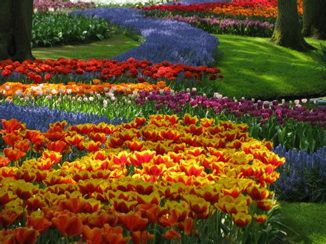 pic of flower gardens amazing magazine the world s largest flower garden keukenhof the netherlands