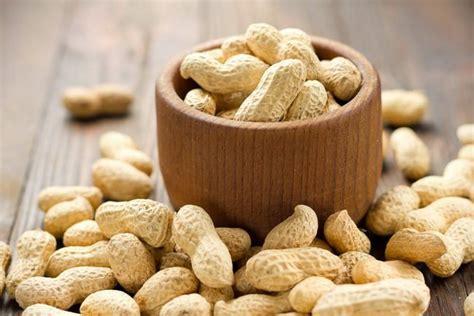 manfaat kacang tanah sebagai teman diet alodokter