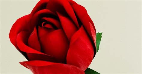 Ultar3d: Red Rose 3d model