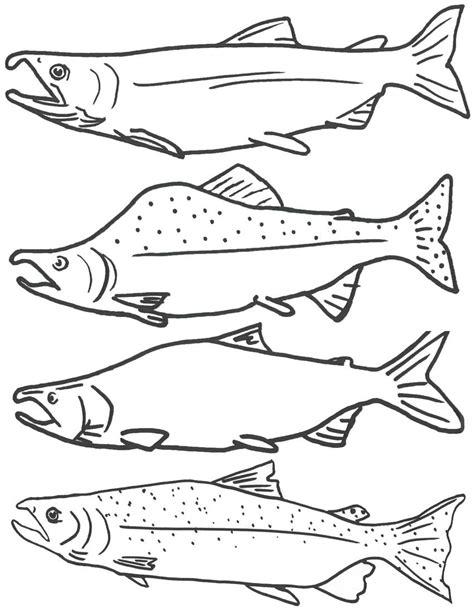 coloring pages for pout pout fish pout pout fish coloring page coloring pages designs