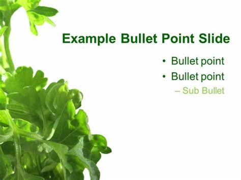herb powerpoint themes parsley powerpoint template