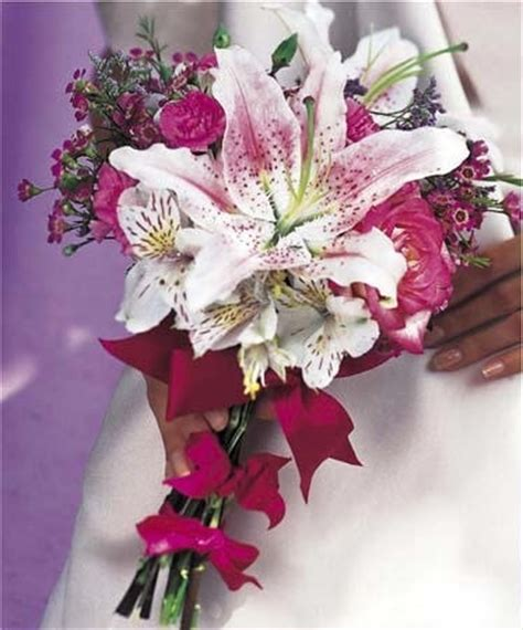 Bouquet Tiger 36 best tiger bouquet images on tiger lilies tiger bouquet and wedding stuff