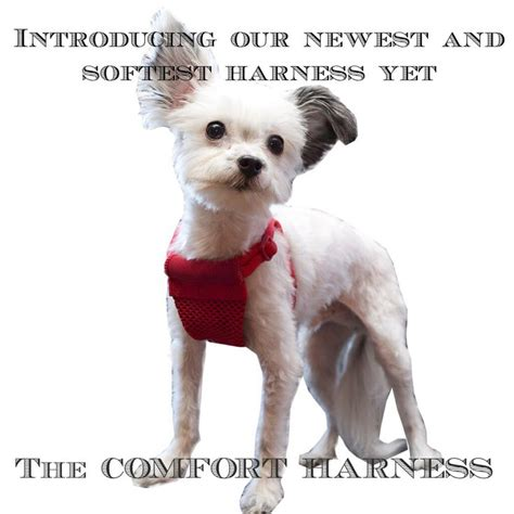 yuppy puppy harness 1000 images about products on