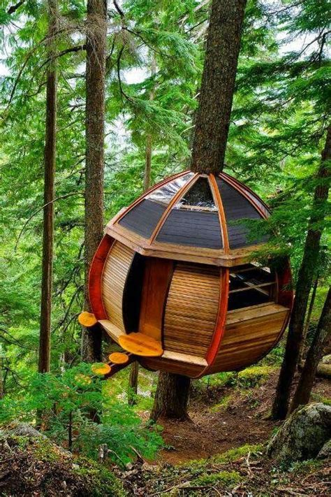 best tree houses best 25 tree houses ideas on pinterest awesome tree houses tree house homes and