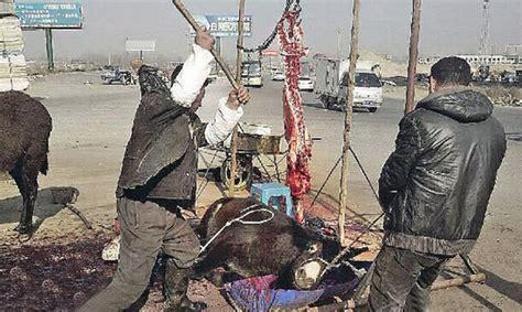 China Now Berbisnis Di Pasar Paling Dinamis Di Dunia pasar segar di china yang mengerikan dan kejam