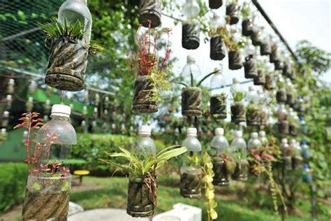 plastic bottle vertical garden ideas soda bottle