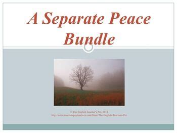 themes in the book a separate peace 1545 best gifted on tpt high school images on pinterest