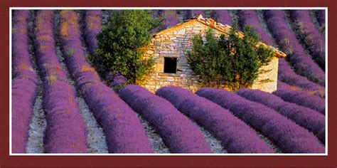 best of provence tour of provence best of provence tours provence