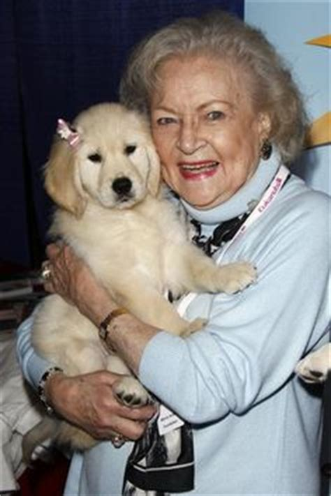 betty white golden retriever 1000 images about betty white what a gal on betty white golden