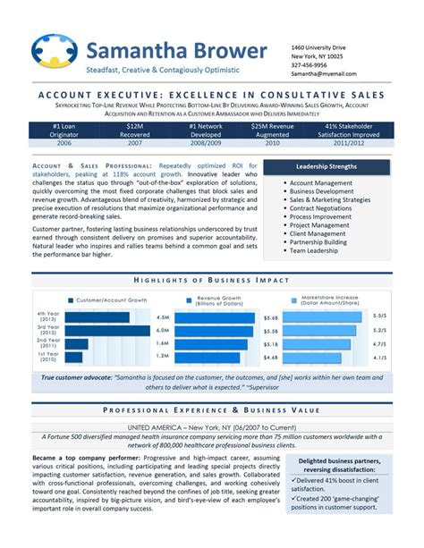 executive resume sles 2015 sales executive career steering premium executive resume