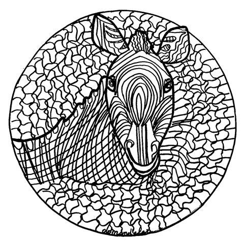 simple mandala coloring pages pdf mandala zebra normal simple mandalas 100 mandalas zen